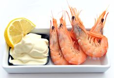 Prawn mayonnaise Royalty Free Stock Image