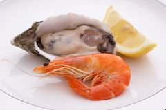 Prawn Oyster and Lemon Royalty Free Stock Photo