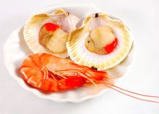 Prawn and red clams Royalty Free Stock Photo