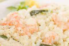 Prawn Risotto Bianco Royalty Free Stock Images