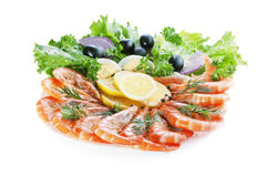 Prawn Salad. On white background Royalty Free Stock Image