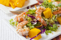 Prawn Salad Royalty Free Stock Photos