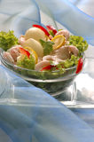 Prawn salad. Shrimp appetizer with fresh salad Royalty Free Stock Photo