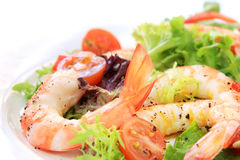Free Prawn Salad Royalty Free Stock Image - 3317086