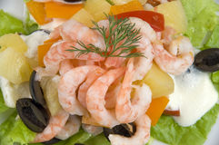 Prawn Salad. Stock Image
