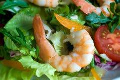 Prawn salad Royalty Free Stock Photo