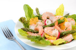 Prawn salad. With orange, asparagus, lettuce and radish with chive garnish Royalty Free Stock Photo