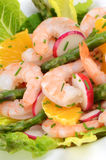 Prawn salad. With orange, asparagus, lettuce and radish with chive garnish Stock Images