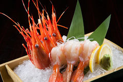 Prawn sashimi on the ice. Prawn sashimi with lemon and wasabi on the ice stock image