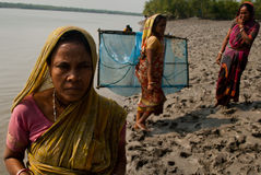 Prawn seed collection in Sunderban Royalty Free Stock Photo