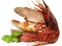 Seafood with Prawn - Shrimp Carabinero royalty free stock image