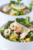 Prawn/shrimp salad Royalty Free Stock Image