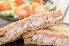 Prawn or shrimp sandwich and salad Royalty Free Stock Photography