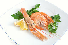 Prawn and shrimps with parsley Royalty Free Stock Image