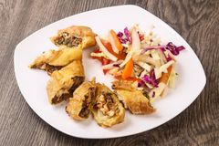 Prawn spring roll. With cabbage and carrots royalty free stock images