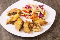 Prawn spring roll. With cabbage and carrots stock images
