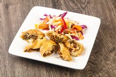 Prawn spring roll. With cabbage and carrots Stock Image