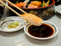 Prawn sushi in chopsticks. Dipping with soy sauce royalty free stock photos