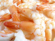 Prawns 2 Royalty Free Stock Photo