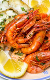 Prawns. Plate with a pile of cooked prawns Royalty Free Stock Photography