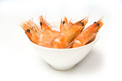 Prawns. Cooked prawns in a bowl. Isolated against a white background Royalty Free Stock Photo