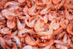 Prawns!. Background of fresh cooked prawns for sale at a market Stock Photography
