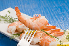 Prawns appetizer Stock Image