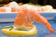 Prawns appetizer Stock Photography