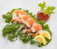 Prawns on bed of romaine Stock Photo