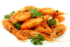 Prawns cooked with herbs on a white background Royalty Free Stock Photography