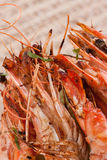 Prawns crayfish shrimp. Closeup of prawns or crayfish, sometimes called shrimp Royalty Free Stock Images