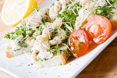 Prawns and cress stock photography