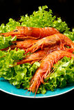 Prawns with fresh salad Stock Image