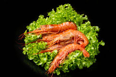 Prawns with fresh salad Royalty Free Stock Photography