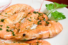 Prawns With Garlic - Closeup Royalty Free Stock Photography