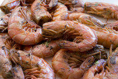 Prawns with garlic and parsley Royalty Free Stock Photos