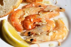 Prawns with garlic tapas. Stock Images