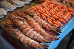 Prawns grilled Royalty Free Stock Photography