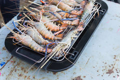 Prawns are grilled on the electric  Barbecue grill Royalty Free Stock Photo