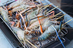 Prawns are grilled on the electric  Barbecue grill Royalty Free Stock Photos