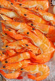 Prawns on Ice Stock Images