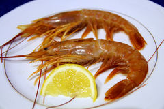 Prawns and lemon. On the table royalty free stock photos