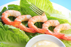 Prawns with Mayonnaise stock photography