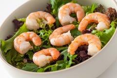 Prawn Salad Royalty Free Stock Photos