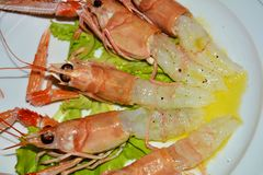 Prawns with oil on a white plate background, close up stock photography