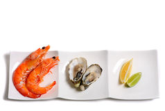 Prawns and oysters on a plate with copy space Royalty Free Stock Images