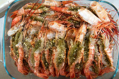 Prawns prepared with herbs for cooking Stock Image