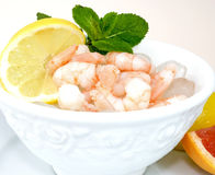 Prawns on the rocks. Processed prawns without tail in a white bowl on ice cubes, decorated with a lemon slice and mint leaves Royalty Free Stock Photo