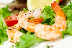 Prawns and salad Royalty Free Stock Images