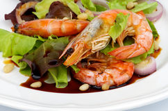 Prawns Salad Stock Photos